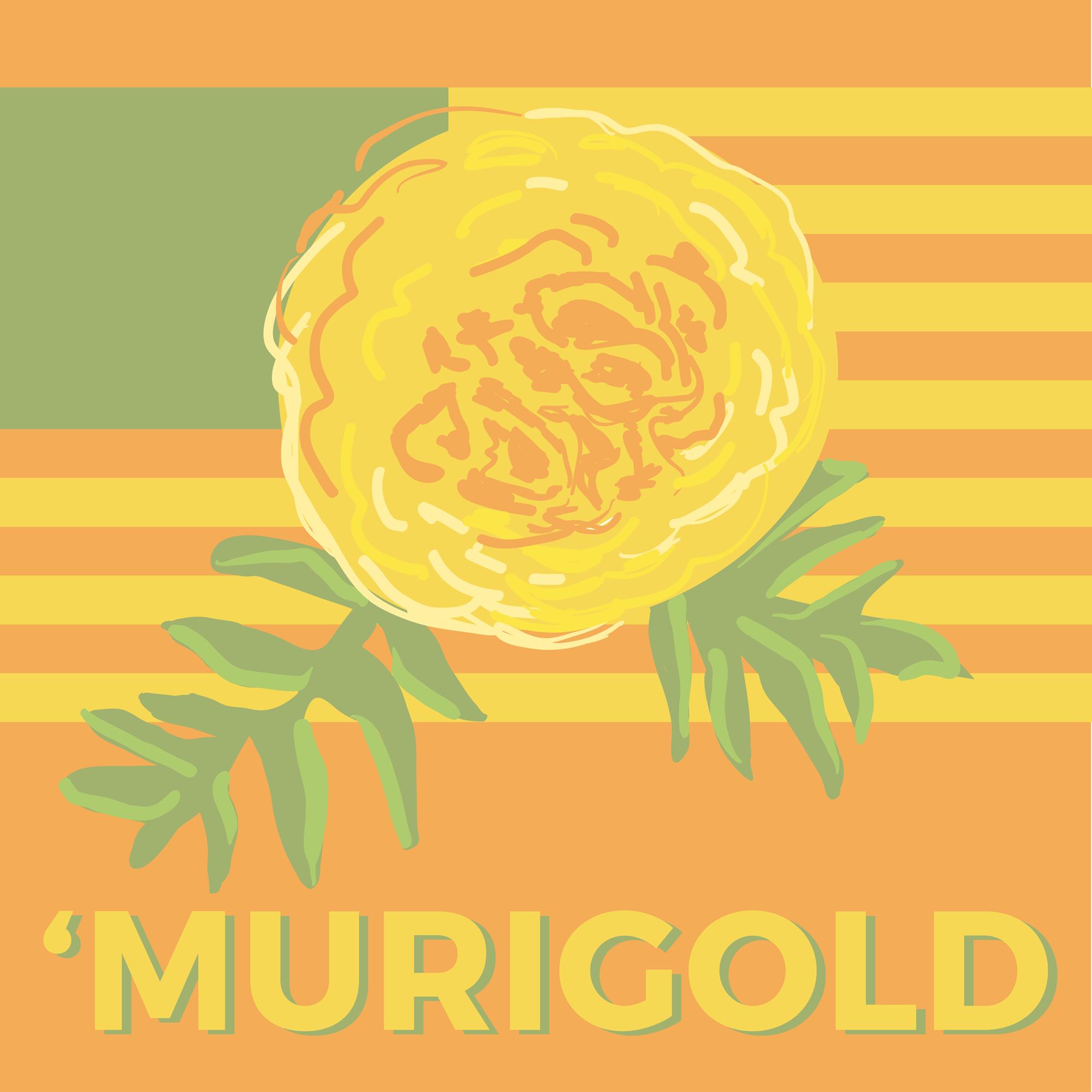 'Murigold