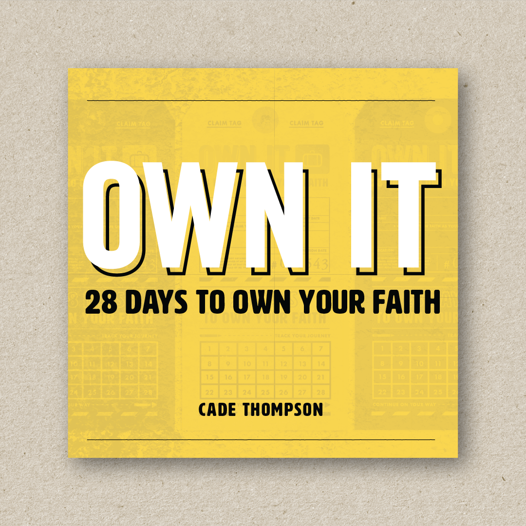 Own It  (cover design and book design)